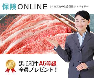 【保険ONLINE】自宅でプロに相談できる!無料のオンライン保険相談の物語